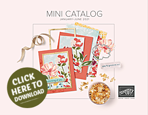 2021 Jan June Stampin Up Mini Catalog 2